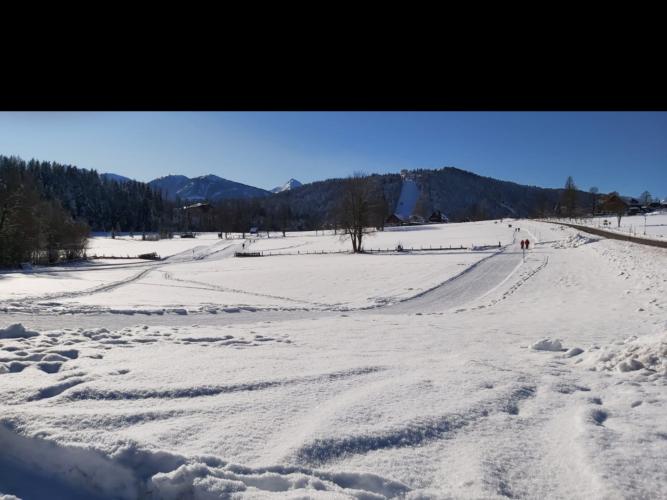 Ski-O Ramsau - 2020