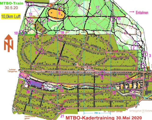 MTBO Training Hörndlwald